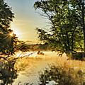 French Creek 17-038 by Scott McAllister