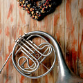 French Horn Hanging On Wall by Garry Gay