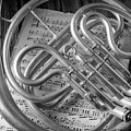 French Horn In Black And White by Garry Gay
