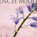 French Market Series A by Rebecca Cozart