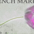 French Market Series D by Rebecca Cozart