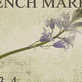 French Market Series F by Rebecca Cozart