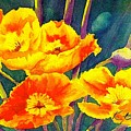 French Poppies by KC Winters