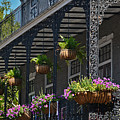 French Quarter Sunlit Balcony - New Orleans by Greg Jackson
