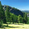 Fresh Air In The Mountains Photo Art by Sharon Talson