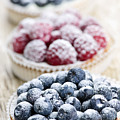 Fresh Berry Tarts by Elena Elisseeva