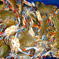 Fresh Crab In Market by Jeelan Clark