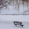 Fresh Fallen Snow by James BO Insogna