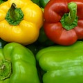 Fresh Peppers II by Florene Welebny