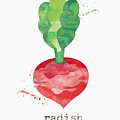 Fresh Radish by Linda Woods