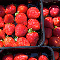 Fresh Ripe Strawberries In Plastic Boxes by Louise Heusinkveld