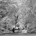 Fresh Snowfall At Mount Auburn Cemetery by Ken Stampfer