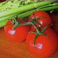 Fresh Tomatoes by Ira Marcus