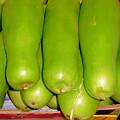 Fresh Vegetable Gourd by Jeelan Clark