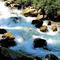 Fresh Water - Colorado Rockies by Cheryl Poland