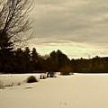 Freshly Fallen Snow by Elizabeth Tillar
