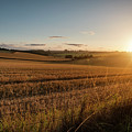 Freshly Harvested Fields Of Barley In Countryside Landscape Bath by Matthew Gibson