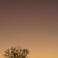 Friends Awaiting Sunrise by Monte Stevens