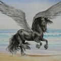 Friesian Pegasus by Louise Green
