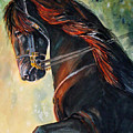 Friesian Sunset by Gina Hall