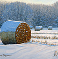 Frigid Morning Bales by Bruce Morrison