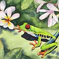 Frog And Plumerias by Hilda Vandergriff
