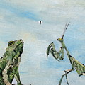 Frog Fly And Mantis by Fabrizio Cassetta