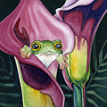 Frog In Pink Calla Lily by Lyse Anthony