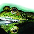 Froggin Around by Ferrel Cordle