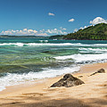 From Bali Hai To Hanalei by Torrence Johnson