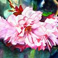 From Judy's Garden by Priti Lathia