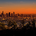 From Mount Hollywood To Los Angeles by Gene Parks