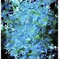 From The Glory Of Trees Abstract by Debra Lynch