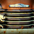 Front End Grille Of 1953 Chevrolet Advantage Design Truck With Dog Skeleton by Anita Hiltz