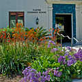 Flowers In Front Of Napier Common Room At Pilgrim Place In Claremont-california by Ruth Hager