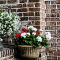 Front Porch With Flower Pots by Kim Hojnacki