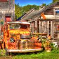 Front Yard by David Bishop