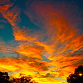 Front Yard Sunset by Chuck Taylor