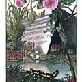 Frontis Of Historia Naturalis Ranarum Nostratium by ArtistAugust Johann Roesel von Rosenhof