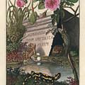 Frontis Of Historia Naturalis Ranarum Nostratium by August Johann Roesel von Rosenhof