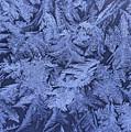 Frost On A Window by Richard Nowitz