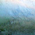 Frost On North Facing Window by Richard Singleton
