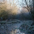 Frosted Riverbank by Hannah Goddard-Stuart