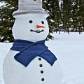 Frosty Alaskan by Rick  Monyahan
