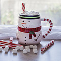Frosty Christmas Mug by Kim Hojnacki