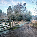 Frosty Lane by Dave Godden