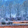 Frosty Morning At The Marsh Photo Art by Sharon Talson