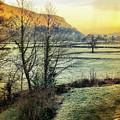 Frosty Morning Light by Mo Barton