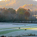 Frosty Morning On The Farm by Randall Evans