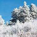 Frosty Mountainside by Steve Krull